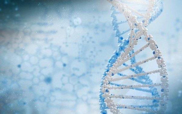Синтетическая теория эволюции требует пересмотра - Ученые