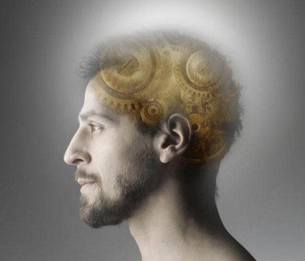 Ученые обнаружили новый вид памяти в мозге человека
