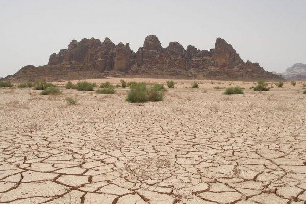 Люди впервые загрязнили реку отходами 7000 лет назад - ученые