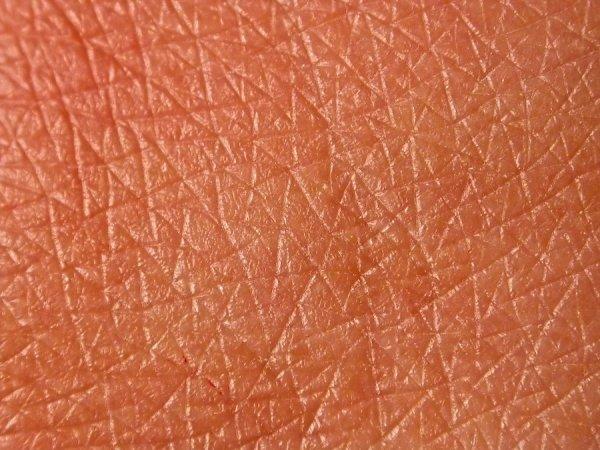 Ученые узнали, почему кожа человека не протекает