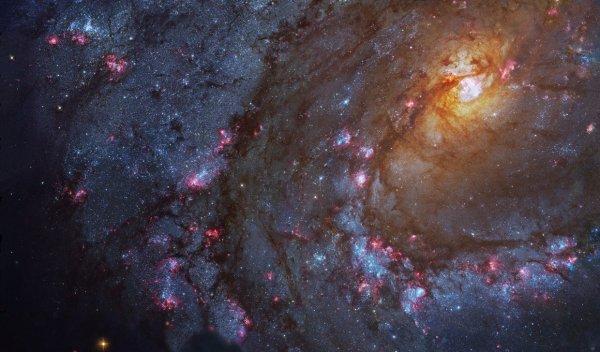Ученые обнаружили новую карликовую галактику в районе Messier 83
