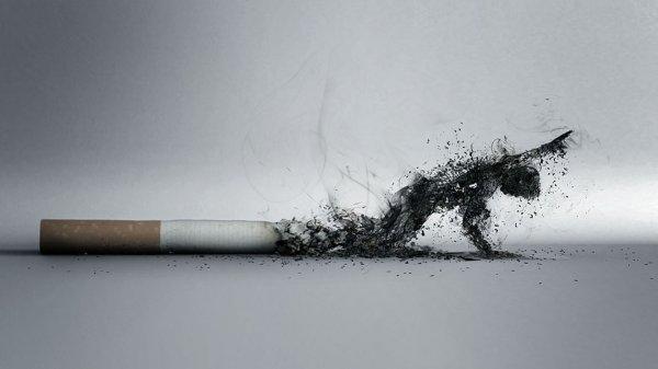 Незначительная интенсивность курения губительно влияет на организм