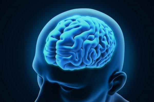 Ученые: Дыхательная гимнастика улучшает работу головного мозга