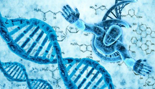 Ученые случайно выявили способ предотвращения мутаций ДНК человека