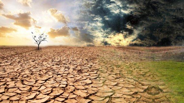 Ученые заявляют о глобальной засухе