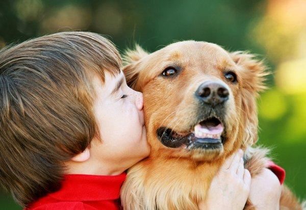 Ученые: Собака в доме уменьшает тревожность у детей