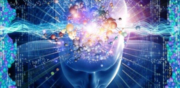 Выучить иностранный язык поможет технология «Быстрого мозга»