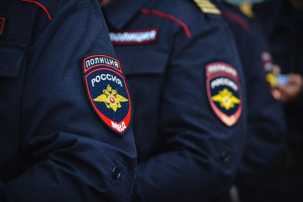 Мобильное приложение МВД РФ набирает популярность