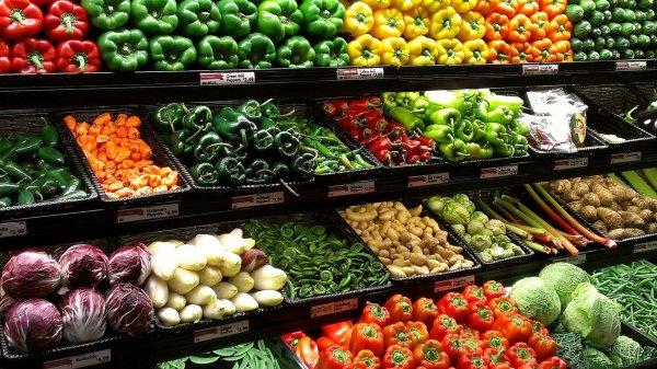 Немецкие медики поддержали вегетарианство