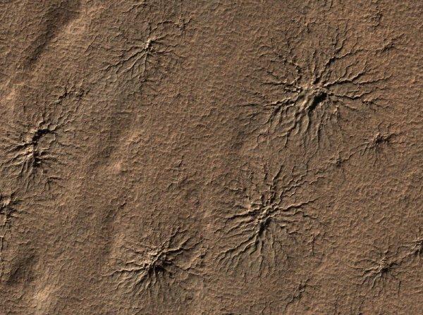 Ученые NASA объяснили причины роста «паучьих сетей» на Марсе