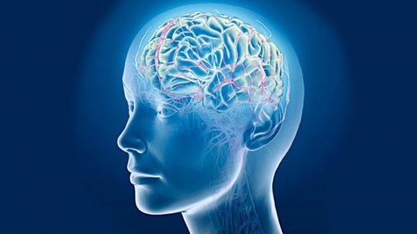 Ученые: У мужчин мозг стареет раньше, чем у женщин
