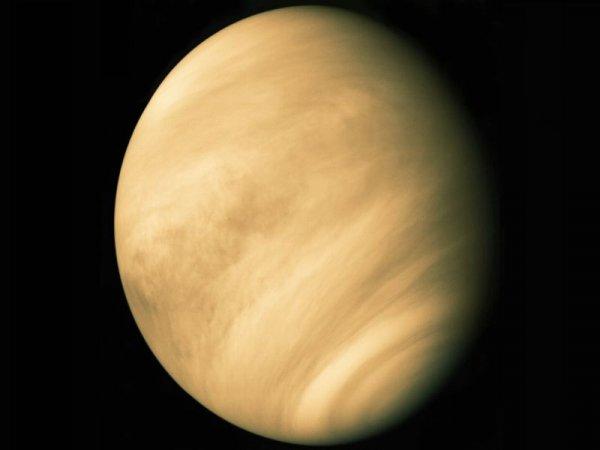 Учены: Венера была первой обитаемой планетой Солнечной системы
