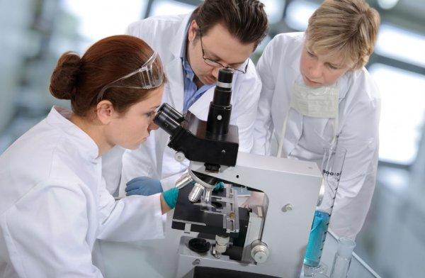 Российские ученые изобрели самодвижущихся «нанопловцов»
