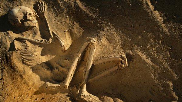 Американские археологи нашли скелет древней девочки, больной туберкулёзом