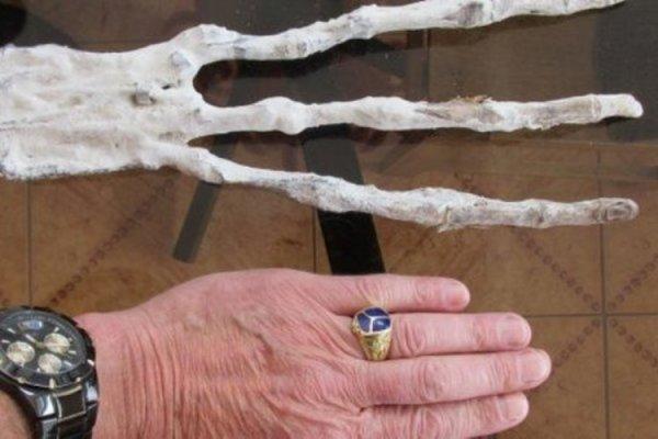 В пещере Перу обнаружили руку неизвестного существа с тремя пальцами