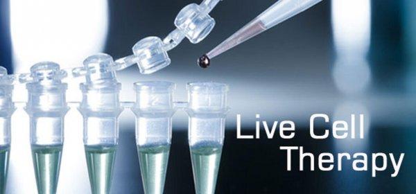 С 1 января в России разрешено применение клеточной терапии