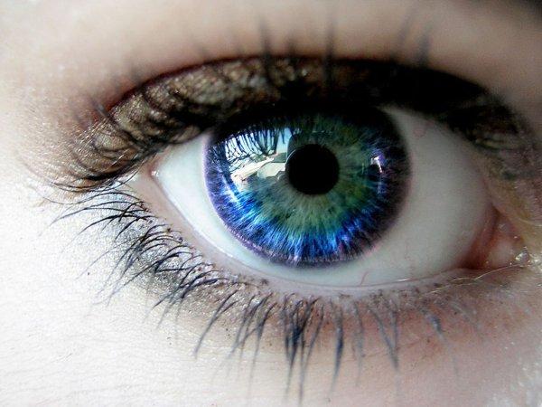 Verily Life Sciences и Nikon создадут технику для диагностики заболеваний глаз
