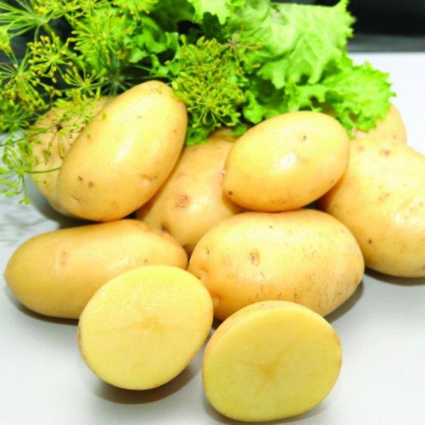 Ученые: Банан, картофель и мучные изделия положительно влияют на здоровье