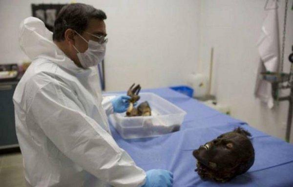 Ученые находятся на последнем этапе разработки технологии воскрешения мертвых