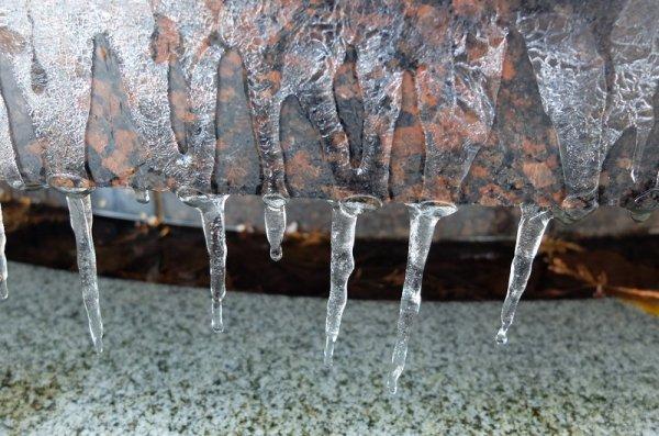 Самый чувственный фонтан Рима покрылся льдом