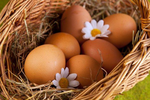 Ученые: Употребление яиц полезно мужчинам