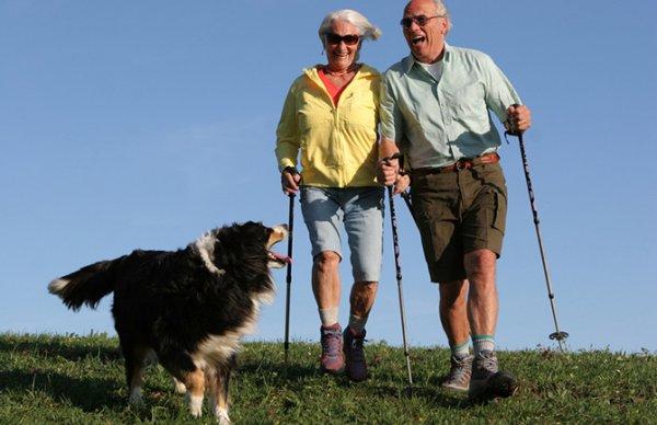 Ученые: Излечиться от артрита можно за 45 минут в день