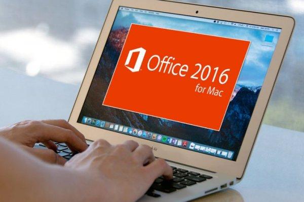 Microsoft Office Insider стала доступной для платформы iOS