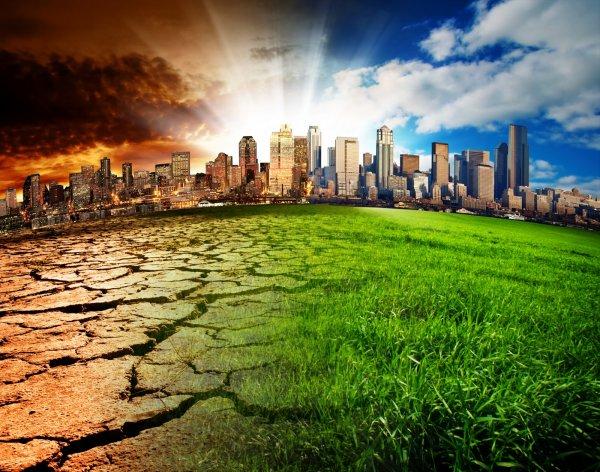 Росприроднадзор расширит полномочия по контролю над экологией