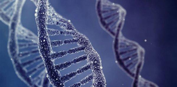 Сенсационное открытие поможет лечить генетические и онкологические заболевания
