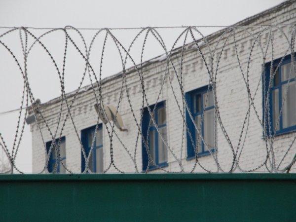 В Челябинской области парню дали 18,5 лет за жесткое убийство бабушки