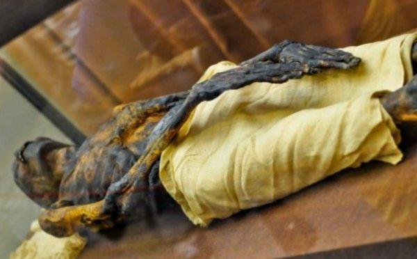 Мумий из Эрмитажа изучают при помощи рентгеновского томографа