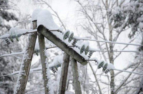 Минобороны ДНР предложило ввести режим тишины для ремонта электропередач в районе Авдеевки