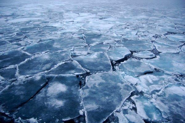 Климатологи: в скором времени Арктика может лишиться морских льдов