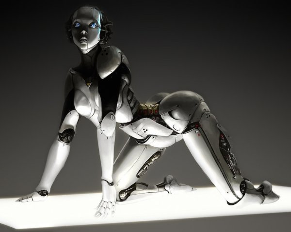 В скором будущем роботы заменят порнозвезд