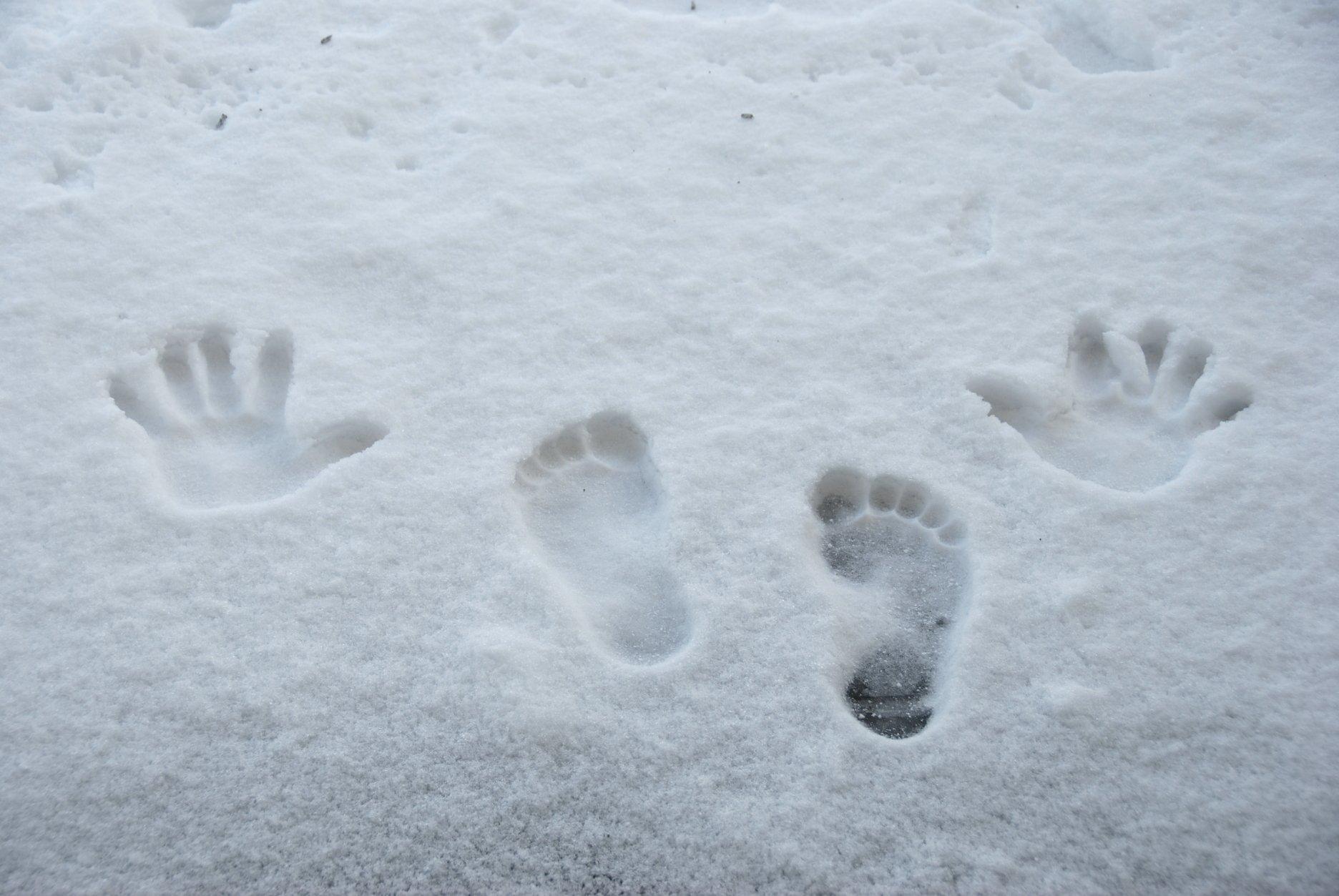 фото следов человека на снегу может быть однослойной