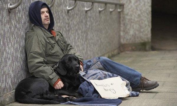 Канадские студенты рассказали, чего хотят бездомные