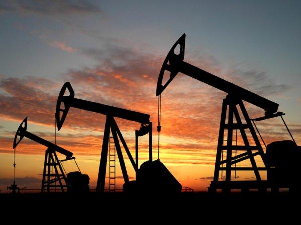 Ученые предсказали падение спроса на нефть к 2020 году