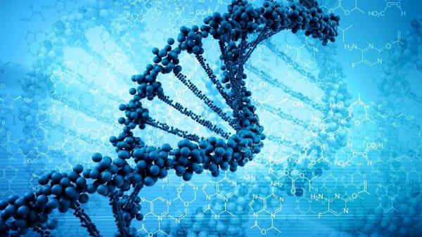 Ученые рассказали об особенностях «темных» генов
