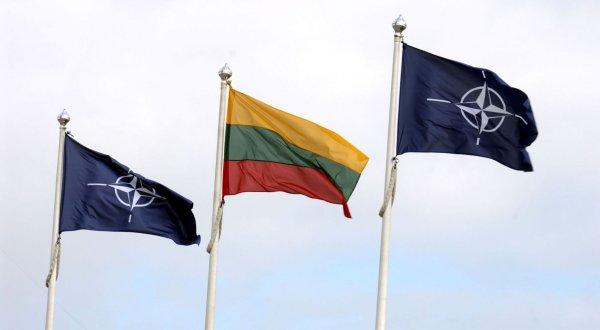 Президент Литвы хочет нарастить контингент войск НАТО в стране