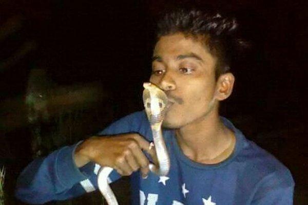 В Индии работник зооцентра погиб от укуса кобры, пытаясь сделать селфи
