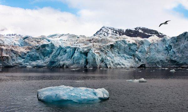 Ученые «преувеличили» данные о глобальном потеплении для получения финансирования
