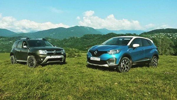 Самыми популярными автомобилями Renault января в РФ стали Duster и Kaptur