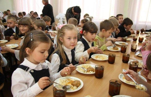 Ученые: На умственные способности детей влияет правильное питание