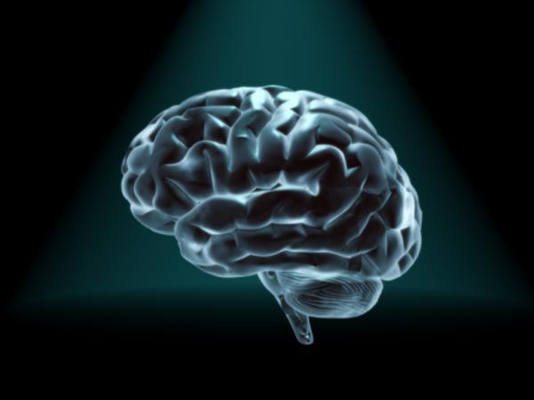 Ученые разработали модель мозга для оценки болевых ощущений