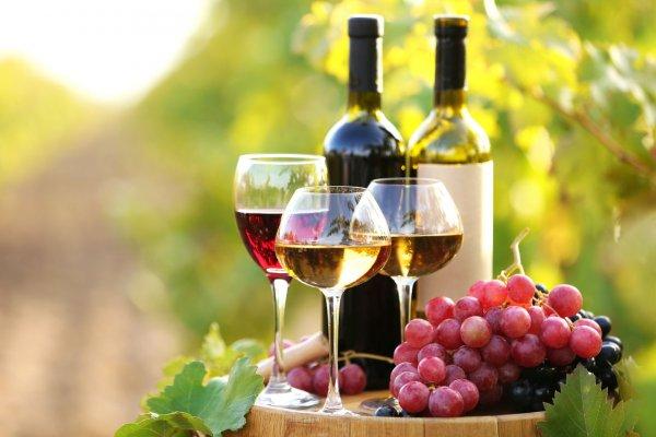 Грузинские вина удостоились множества наград в Японии