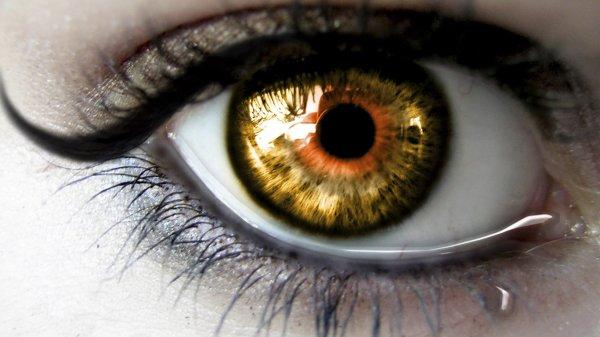 Учёные показали мир глазами слепых людей