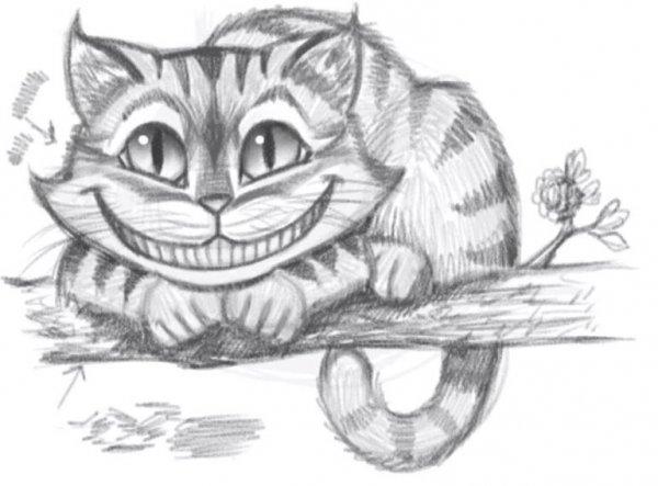 Завтра в Сочи пройдет выставка ко Дню кошек