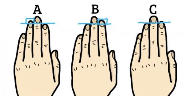 Ученые: Размер пальцев показывает особенности человека