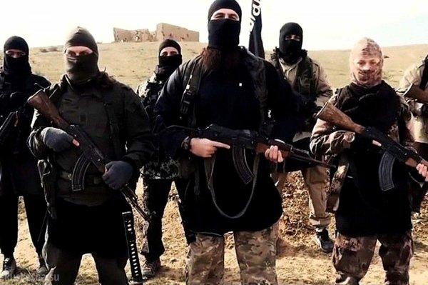 Войска Сирии отразили нападение террористов-смертников под Пальмирой