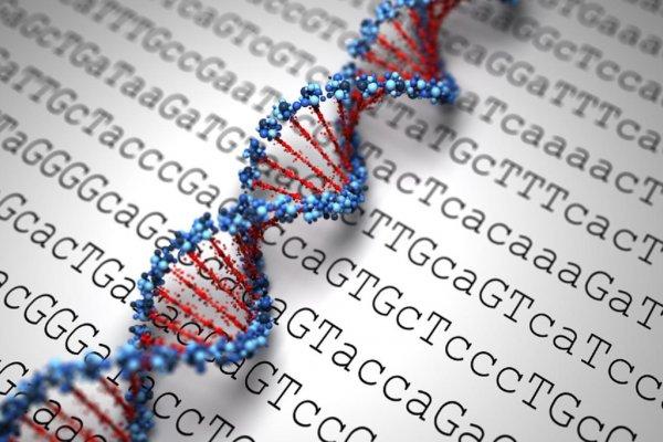 Компьютер на основе молекул ДНК станет сверхбыстрым